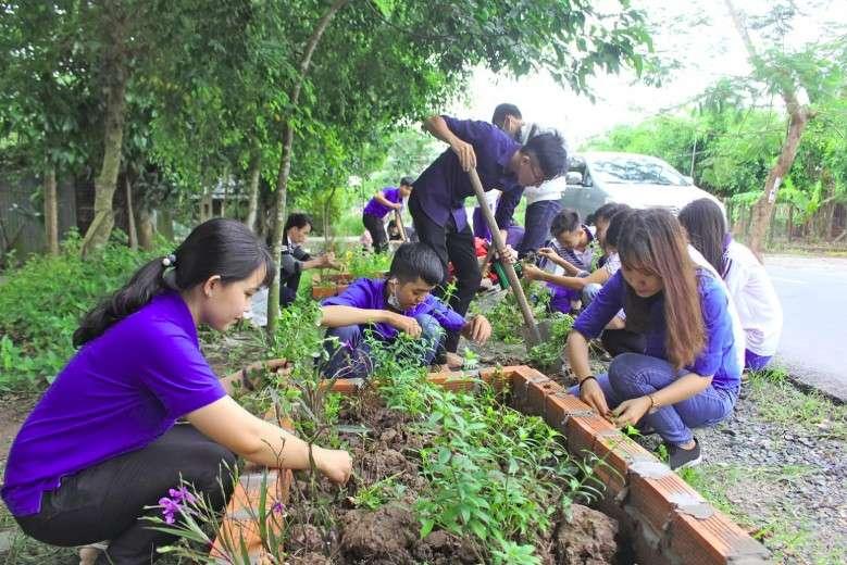 Hình ảnh trồng cây bảo vệ môi trường