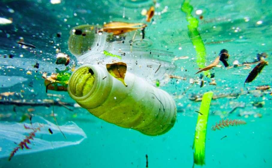 Hình ảnh Ô nhiễm môi trường nước