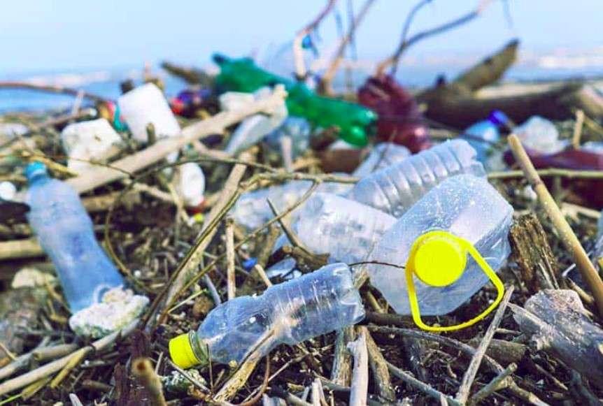Ô nhiễm môi trường sống đáng báo động